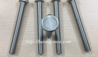 phân phối bulong inox 304 M20x180